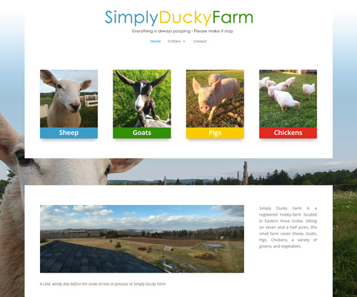 Simply Ducky Farm