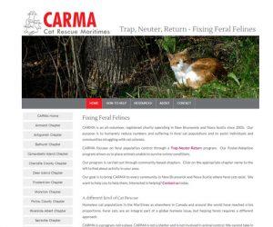 Simply Ducky Web Design: CARMA