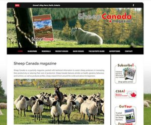 Simply Ducky - Sheep Canada Magazine